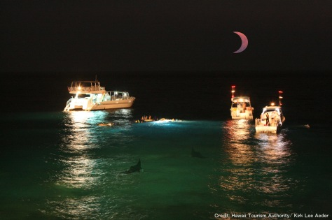 Manta diving with eclipse